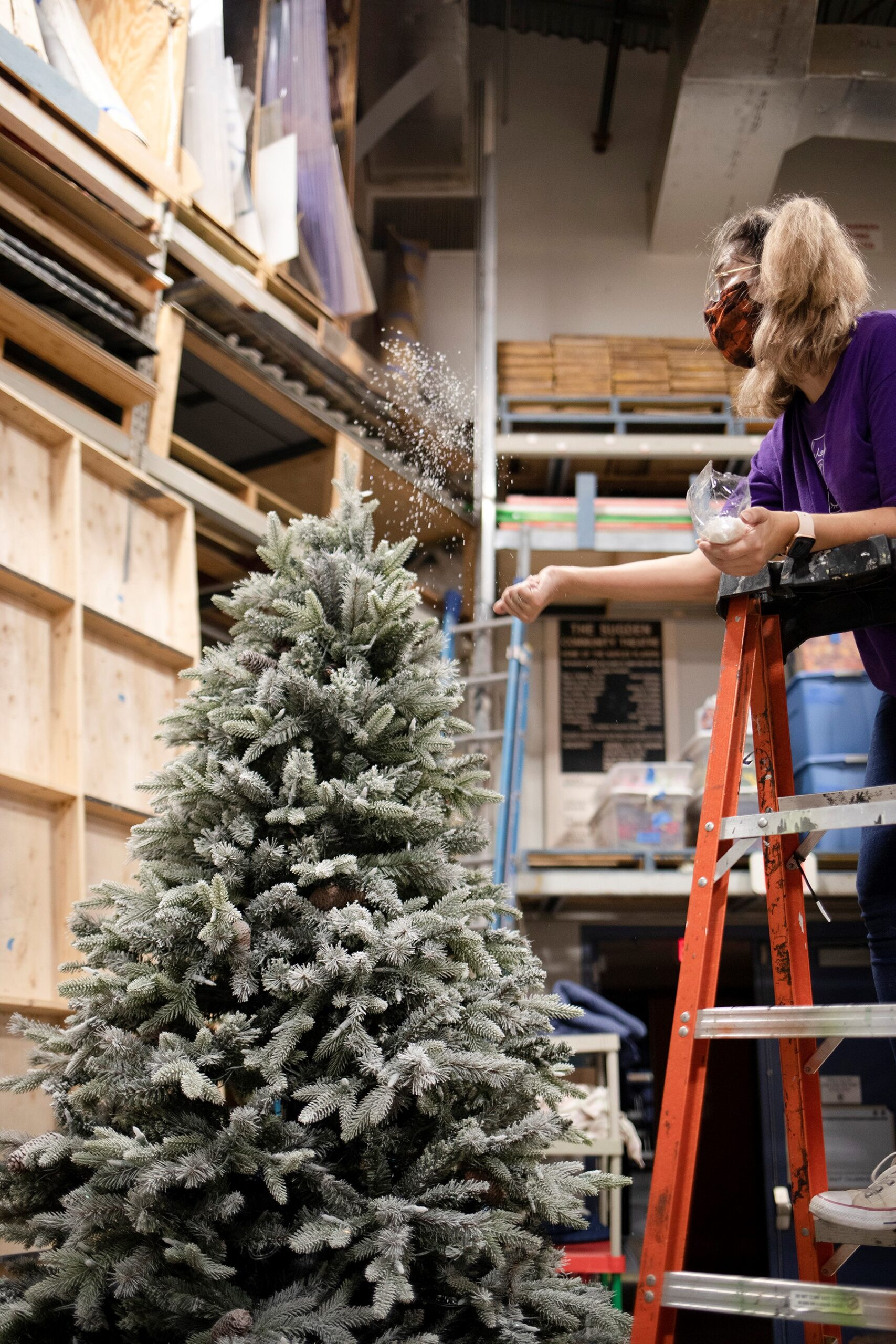 Women on ladder christmas tree